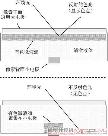 ig的基本结构图